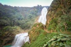 Cachoeiras bonitas do EL Chifflon em Chiapas, México Fotografia de Stock