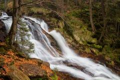 Cachoeiras bonitas na floresta bávara Fotografia de Stock Royalty Free