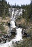 Cachoeiras da angra do emaranhado. Imagem de Stock
