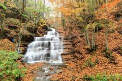 Cachoeiras da floresta de Casentino Fotografia de Stock Royalty Free