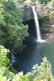 Cachoeiras da ilha Imagens de Stock