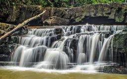 Cachoeiras das florestas úmidas Imagens de Stock Royalty Free