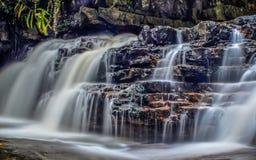 Cachoeiras das florestas úmidas Fotos de Stock