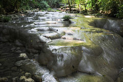 Cachoeiras de altares do siete na floresta em Livingston Imagens de Stock Royalty Free