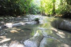 Cachoeiras de altares do siete na floresta em Livingston Imagem de Stock Royalty Free