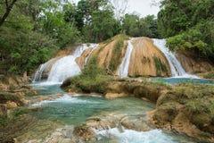 Cachoeiras de Azul da água em Chiapas México Foto de Stock Royalty Free