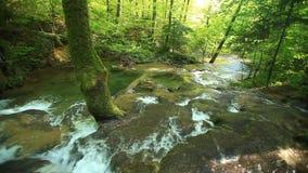 Cachoeiras de Beusnita, condado de Caras-Severin, Anina Mountains, Rom?nia video estoque