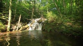 Cachoeiras de Beusnita, condado de Caras-Severin, Anina Mountains, Rom?nia vídeos de arquivo