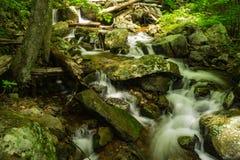 Cachoeiras de conexão em cascata na angra de Fallingwater fotos de stock royalty free