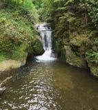 Cachoeiras de Geroldsauer, Baden Baden, rttemberg do ¼ de Baden WÃ, Alemanha Imagem de Stock Royalty Free