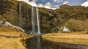 Cachoeiras de Islândia video estoque