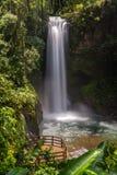 Cachoeiras de La Paz imagem de stock royalty free
