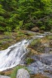 Cachoeiras de Ourlia na montanha de Olympus, Gr?cia fotografia de stock