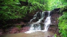 Cachoeiras de Ucrânia na região de Chernivtsi video estoque