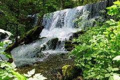 Cachoeiras do rio Vrelo Foto de Stock Royalty Free