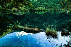Cachoeiras e árvores no Vale Jiuzhaigou, Sichuan, China foto de stock royalty free