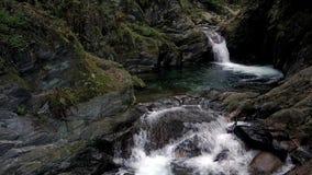 Cachoeiras e associações naturais filme