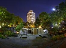 Cachoeiras e edifício na noite Imagem de Stock