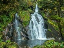 Cachoeiras e floresta de Triberg ao redor Imagens de Stock Royalty Free