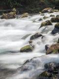 Cachoeiras e logs musgosos e rochas Imagem de Stock Royalty Free