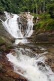 Cachoeiras em Cameron Highlands, Malásia fotos de stock royalty free