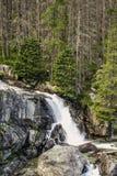 Cachoeiras em Tatras alto Fotografia de Stock Royalty Free
