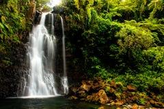 Cachoeiras médias de Tavoro no parque nacional da herança de Bouma, Taveun Fotos de Stock