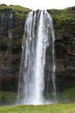 Cachoeiras majestosas com rochas e grama ao redor Foto de Stock Royalty Free