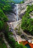 Cachoeiras na floresta Imagem de Stock