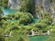 Cachoeiras na floresta Fotos de Stock