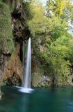 Cachoeiras na floresta selvagem Foto de Stock Royalty Free