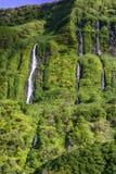 Cachoeiras na ilha de Flores, arquipélago de Açores (Portugal) Fotos de Stock Royalty Free