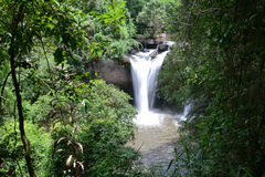 Cachoeiras na selva Fotografia de Stock Royalty Free