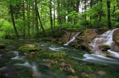 Cachoeiras nas montanhas Carpathian Fotos de Stock Royalty Free