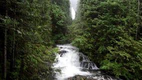 Cachoeiras no dia chuvoso filme