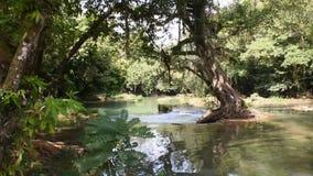 Cachoeiras pequenas de Namtok Chet Sao Noi no parque nacional em Saraburi, Tailândia vídeos de arquivo