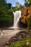 Cachoeiras tropicais Imagens de Stock Royalty Free