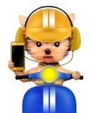 Cachorrinho adorável com o telefone celular que senta-se no velomotor Fotografia de Stock Royalty Free