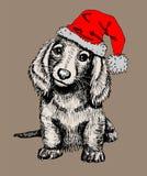 Cachorrinho bonito em um tampão vermelho, um símbolo do ano novo 2018 Imagem de Stock Royalty Free