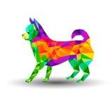 Cachorrinho da ilustração dos desenhos animados do vetor da chihuahua do cão Fotografia de Stock