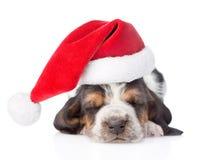 Cachorrinho do cão de basset do sono no chapéu vermelho de Santa Isolado no branco Fotos de Stock Royalty Free