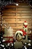 Cachorrinho do cartão da época de Natal Fotografia de Stock Royalty Free