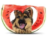 Cachorrinho do pastor e uma fatia de melancia Desenho da aguarela Imagens de Stock