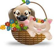 Cachorrinho e gatinho na cesta com flores Fotografia de Stock Royalty Free