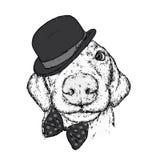 Cachorrinho em um chapéu, em vidros e em um laço Dia do ` s de Patrick Vector a ilustração para um cartão ou um cartaz, cópia par Imagens de Stock