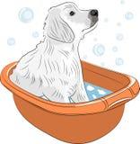 Cachorrinho labrador retriever do vetor Imagens de Stock Royalty Free