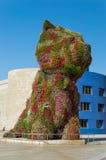 Cachorrinho na frente do museu de Guggenheim em Bilbao Fotografia de Stock Royalty Free