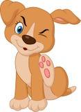 Cachorrinho novo dos desenhos animados A Pit Bull que risca um comichão Fotografia de Stock Royalty Free