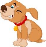 Cachorrinho novo dos desenhos animados A Pit Bull que risca um comichão Imagem de Stock