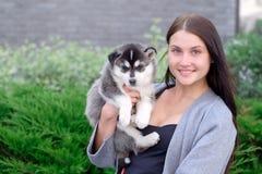 Cachorrinho pouco consideravelmente ronco exterior nas mãos da mulher imagens de stock royalty free